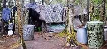 'Selama hampir 30 tahun tak pernah bicara dengan orang', kisah pria yang mengasingkan diri di tengah hutan di AS
