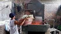 Sampel telur ayam kampung 'terkontaminasi dioksin' di dua desa Mojokerto akibat sampah plastik dari negara-negara Barat