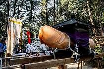 Intip Keseruan Festival Penis di Jepang, Mau Datang?