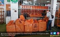Bea Cukai Cirebon Serahkan Paket Berisi Daun Khat ke BNN