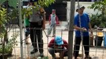 Komunitas Reptil hingga TNI dan Polri Buru Ular Kobra di Citayam