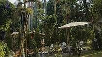Kopi Kebun, Tempat Nongkrong Alami di Tengah Kebun